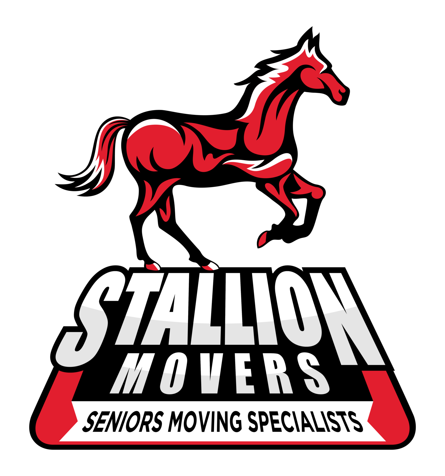 Cambridge SEO Client - Stallion Delivery